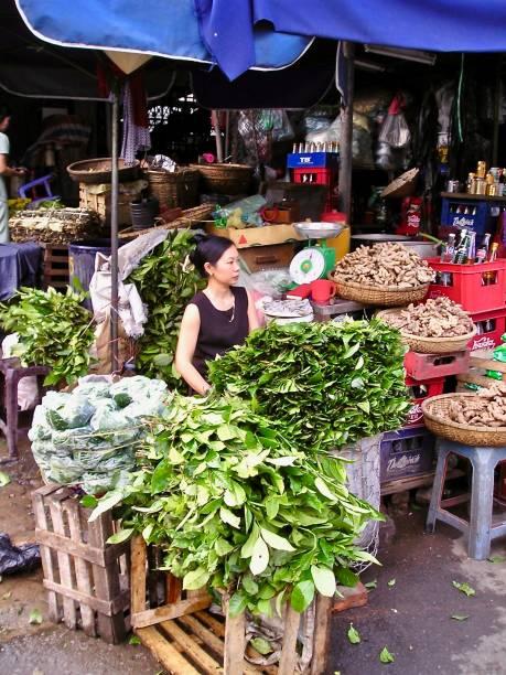 hanoi fresh vegetable vegetable vendor - mcdermp stock photos and pictures