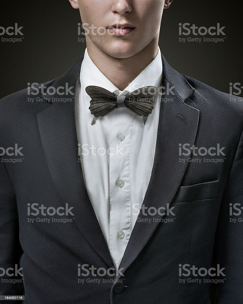 Hansome businessman in suit with bow-tie royalty-free stock photo