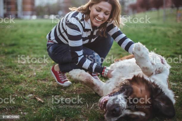Happiest dog owner around picture id919625590?b=1&k=6&m=919625590&s=612x612&h=ai2spqkj3x8zqikg rencnk3kysm3n2akk2r ohqtdk=