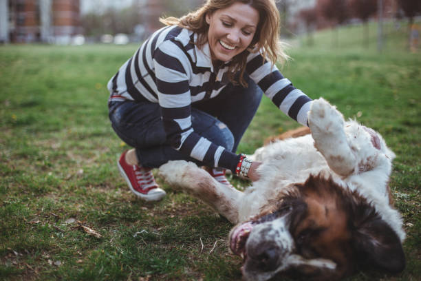 happiest dog owner around - pet owner stock pictures, royalty-free photos & images