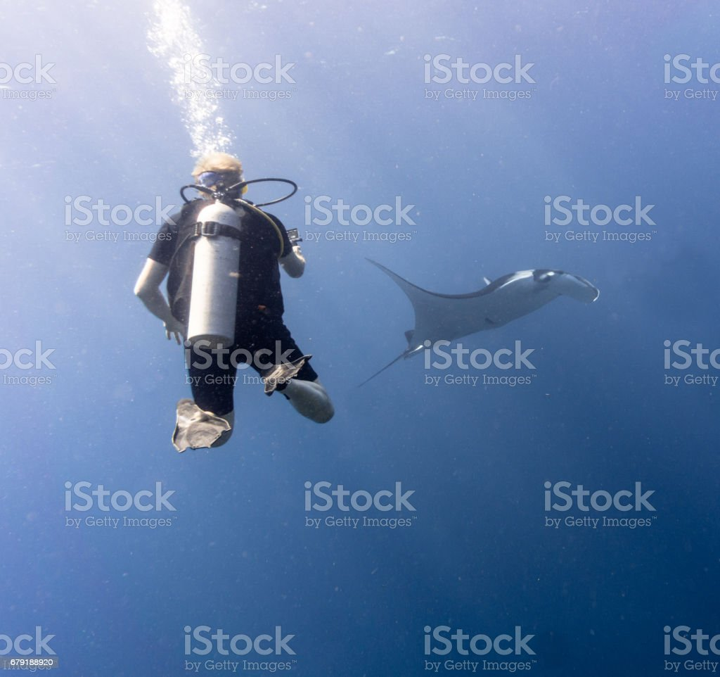 Happiness in Nature: Man enjoying nature scuba diving with and photographing an Endangered Species Pelagic Oceanic Manta Ray (Manta birostris). The location is Hin Muang Archipelago, Krabi, Andaman Sea, Thailand. foto de stock royalty-free