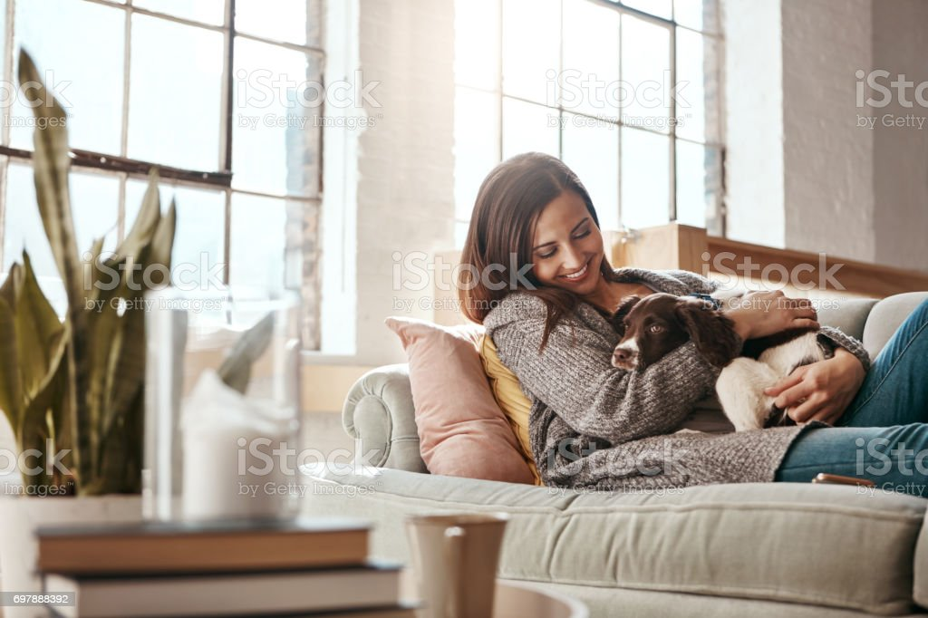 Happiness is a warm puppy stock photo