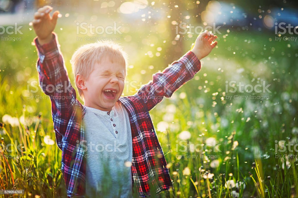 Happiness of a little boy in dandelion field stock photo