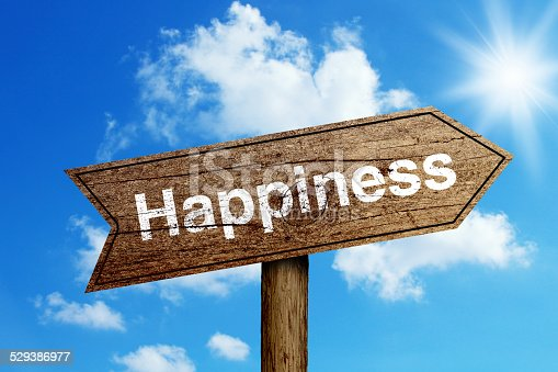168589045 istock photo Happiness Road Sign 529386977