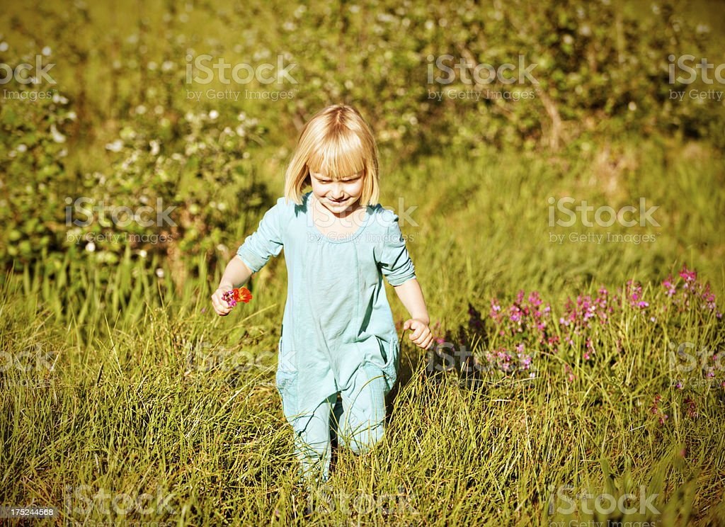 Happy  5-year-old blonde girl running through grassy meadow stock photo