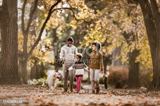 Happy black family enjoying while walking with their retriever in autumn day at the park.