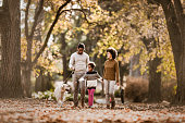 istock Happy African American family taking their dog for an autumn walk. 1140939348
