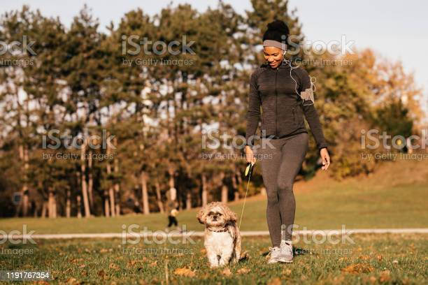 Happy african american sportswoman and her dog walking in nature picture id1191767354?b=1&k=6&m=1191767354&s=612x612&h=v284adhxn2nnrio gtjb a lp7u sjbdsw5wfmgvpgg=