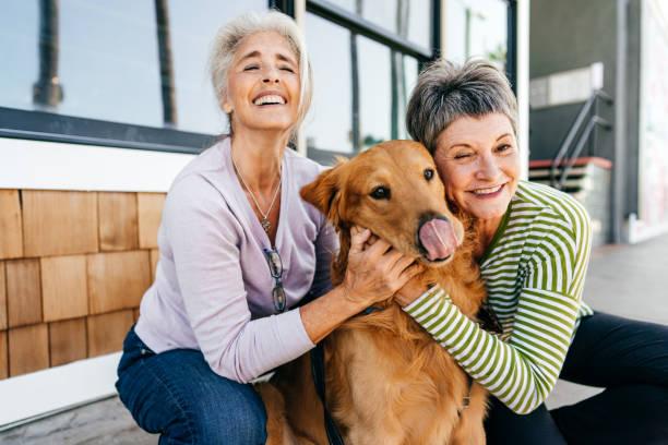 Glückliches und gesundes Leben von Hundebesitzern – Foto