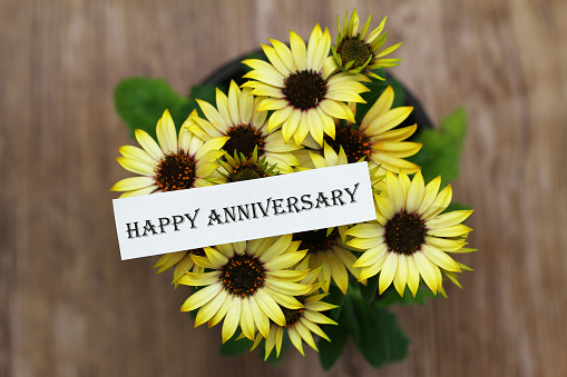happy anniversary card with yellow daisy flowers in pot