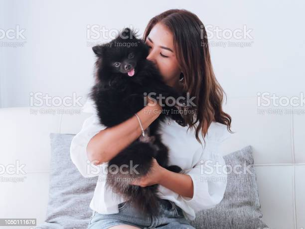Happy asian woman playing with her black dog on sofa at home concept picture id1050111676?b=1&k=6&m=1050111676&s=612x612&h=mwai26mmawjnqyisfaszjefbikiyfdmekvlbb0qafkg=