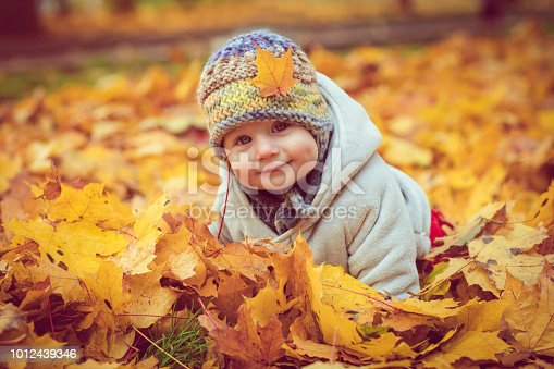 istock Happy baby boy in autumn 1012439346
