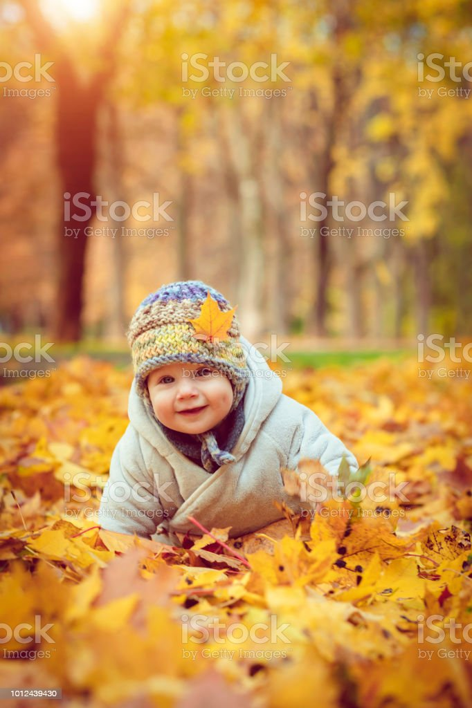 Happy baby boy in autumn stock photo