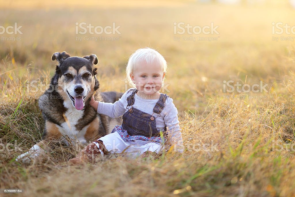 Happy Baby Girl Sitting in Field With Adopted German stock photo