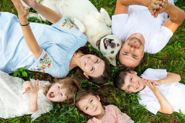 Happy beautiful big family together mother, father, children and dog lying on the grass top view stock photo