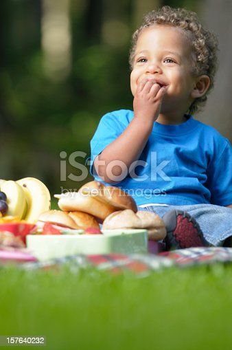 istock Happy Biracial Baby/Toddler On A Picnic 157640232