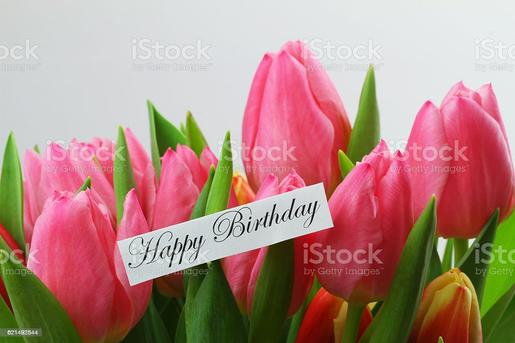 Carta di buon compleanno con tulipani rosa foto stock royalty-free
