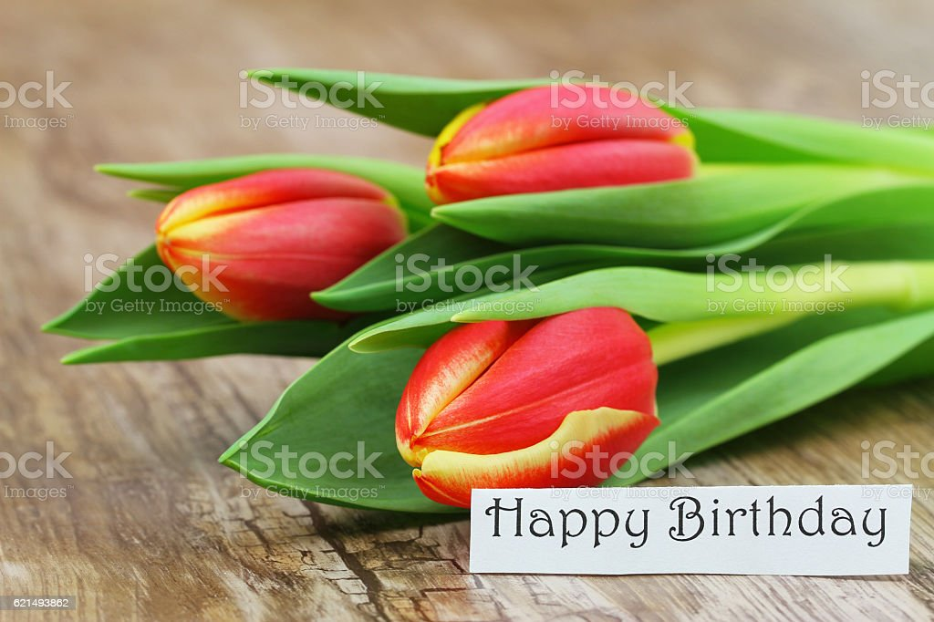 Happy Birthday card with red and yellow tulips on wood Lizenzfreies stock-foto