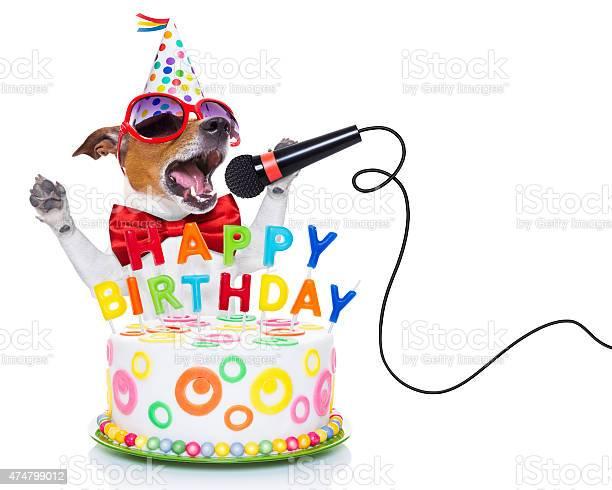 Happy birthday dog picture id474799012?b=1&k=6&m=474799012&s=612x612&h=bn75 uczzk1tpvpa86gxc f9cjwiwap jaulnebs9zc=