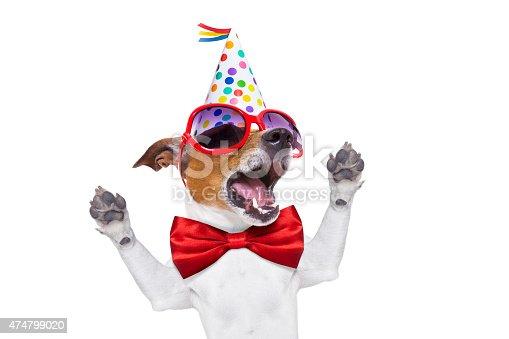 istock happy birthday dog singing 474799020