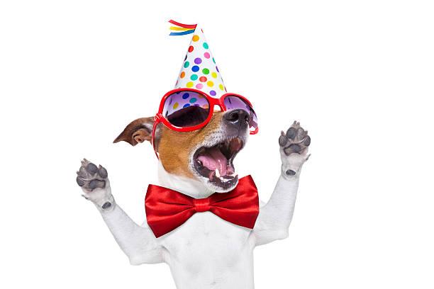 Happy birthday dog singing picture id474799020?b=1&k=6&m=474799020&s=612x612&w=0&h=m nlyv4g9dw5cn7e rhtx4zkwexsfllirb1ex1g7hpq=