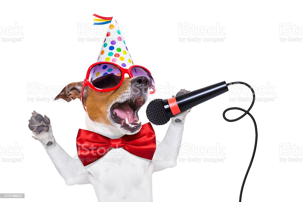 happy birthday dog singing stock photo