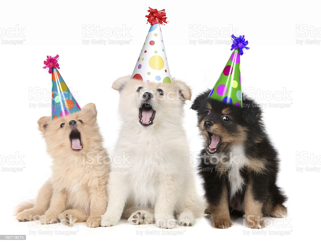 Happy Birthday to You royalty-free stock photo