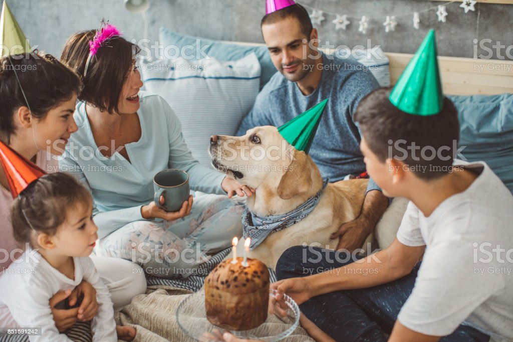 Big family and their dog enjoy in moment of togetherness on bed.