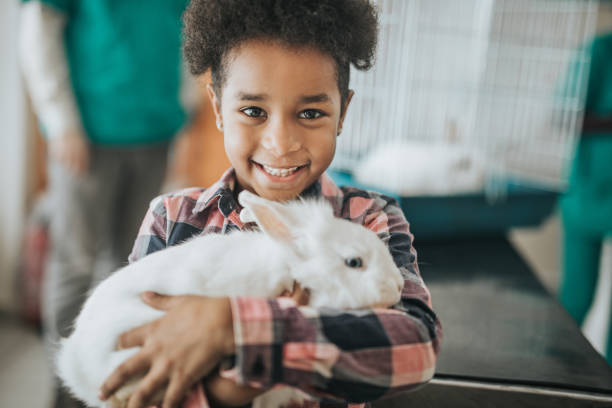 Happy black girl with her rabbit at vet's hospital. Happy African American girl with her rabbit at veterinarian's looking at camera. rabbit animal stock pictures, royalty-free photos & images