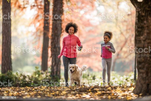 Happy black mother and daughter jogging with a dog in autumn day picture id951077874?b=1&k=6&m=951077874&s=612x612&h=nzkgtg4qfsc7kktl a7l5nqq1ctkccbfmfvwd2trju4=