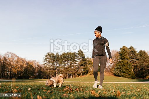 istock Happy black sportswoman walking with her dog at the park. 1191751217