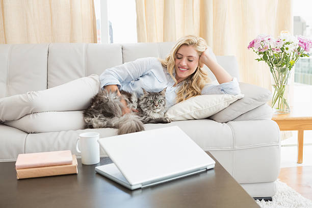 Happy blonde with pet cat on sofa picture id518291643?b=1&k=6&m=518291643&s=612x612&w=0&h=cmv9ih7ccvoa1kco0wssqwglf mejoi2edaf 2v0 ju=