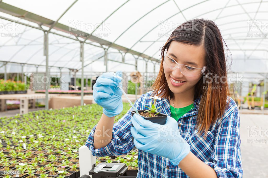 Happy botanist taking soil sample stock photo
