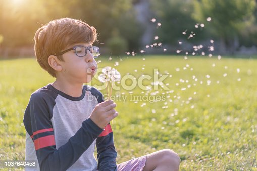 Happy boy blowing dandelion