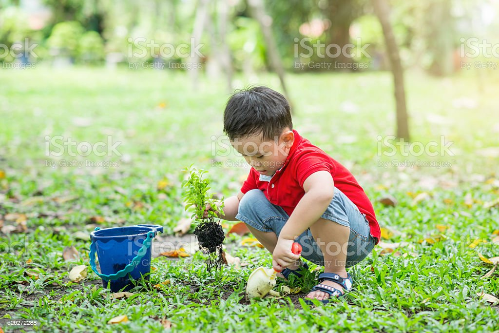 Happy boy gardening stock photo