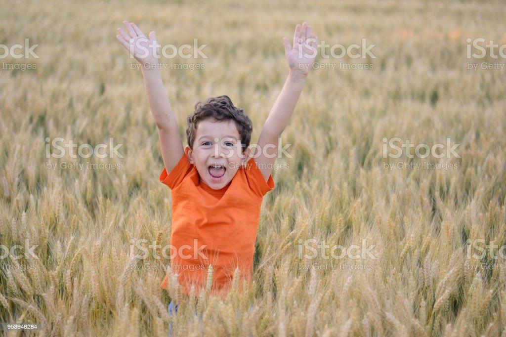 Fröhlicher junge in orange T-shirt im Weizenfeld. – Foto