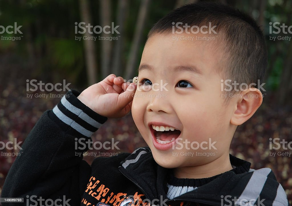 Happy Boy royalty-free stock photo