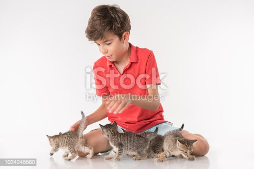 Happy boy playing with kitty  over white background