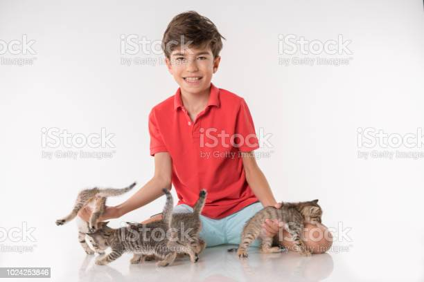 Happy boy playing with kitty picture id1024253846?b=1&k=6&m=1024253846&s=612x612&h=z7cpdfk4vppjlyb0s6 ugvlyuv cahk4agesrjecnms=