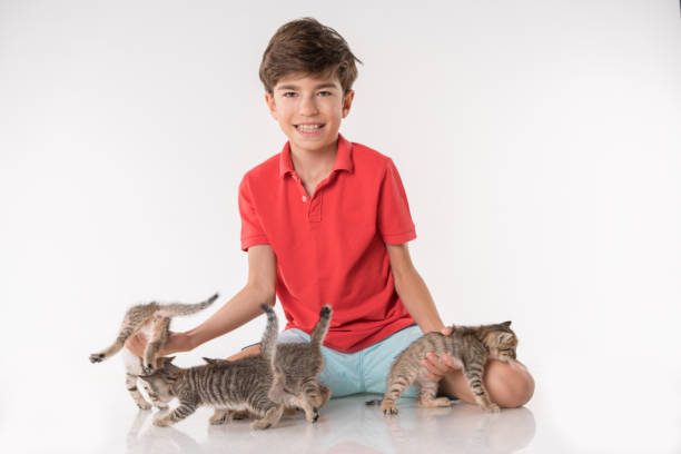 Happy boy playing with kitty picture id1024253846?b=1&k=6&m=1024253846&s=612x612&w=0&h=5iqsby1ugq lpiys7otcburedgbv npvs8vya0nfd8a=