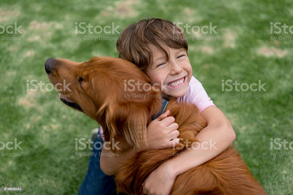 Happy boy with a beautiful dog stock photo