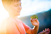 A young 8-9 year-old Caucasian boy carefully holding and looking at a Cape Dwarf Chameleon with the sun setting behind.