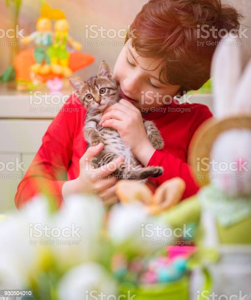 Happy boy with cat picture id930504010?b=1&k=6&m=930504010&s=612x612&h=xi  z1hggqwr6dy33fprohetfdzl0nep3hsnmzjfgis=