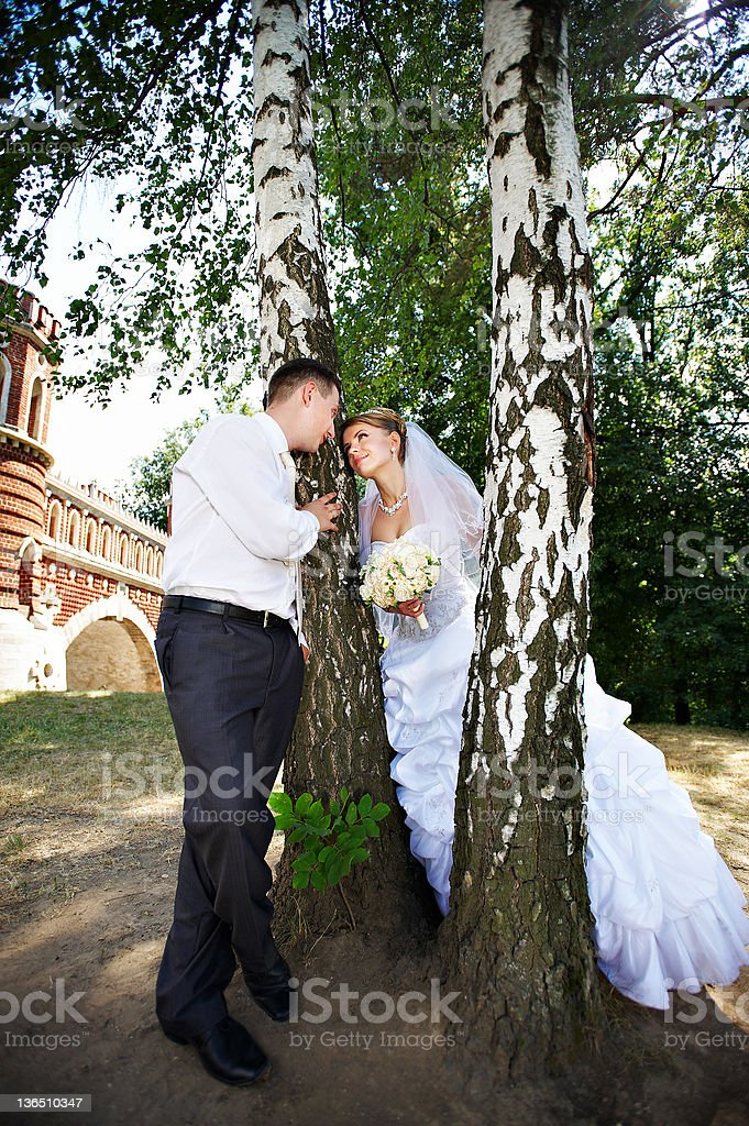 Happy bride and groom in park royalty-free stock photo