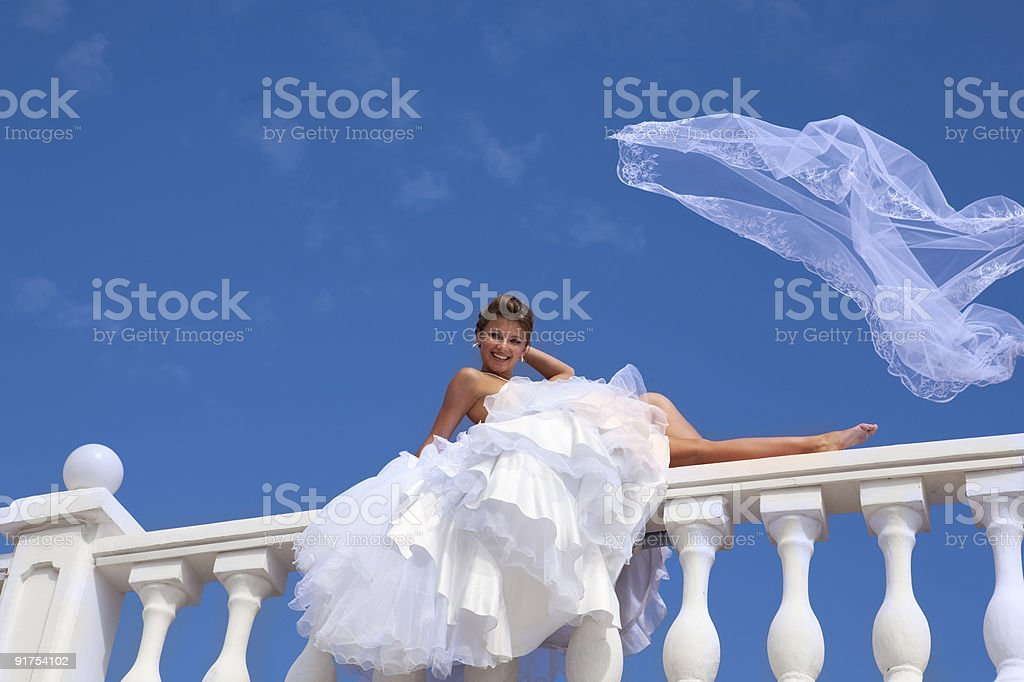 Happy Bride with a Veil at the Blue Sky. XXXL royalty-free stock photo
