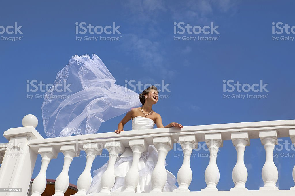 Happy Bride with a Veil at the White Terrace. XXXL royalty-free stock photo