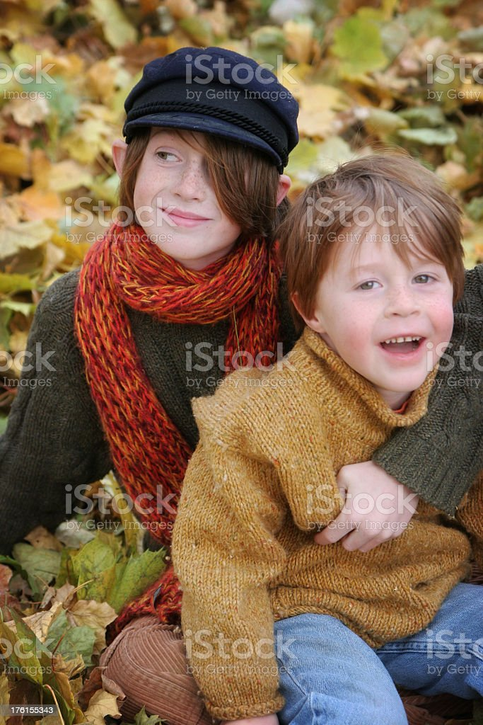 Happy Brothers in Autumn Leaves stock photo