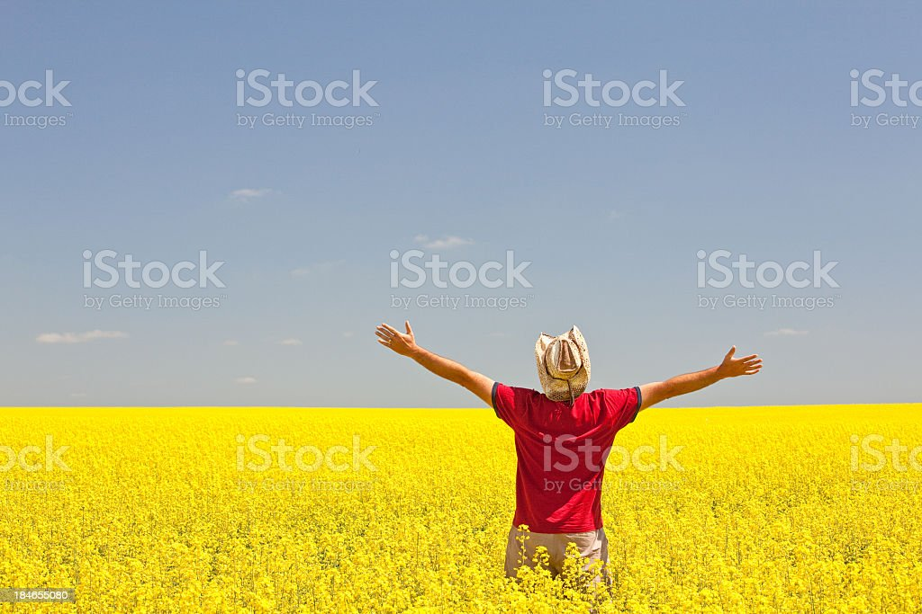 Happy Caucasian Male on the Prairie in Canola Field royalty-free stock photo