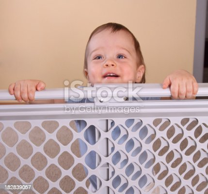 istock Happy Child at Baby Gate 182839057
