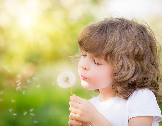 happy child blowing dandelion - beautiful curvy girls stock photos and pictures